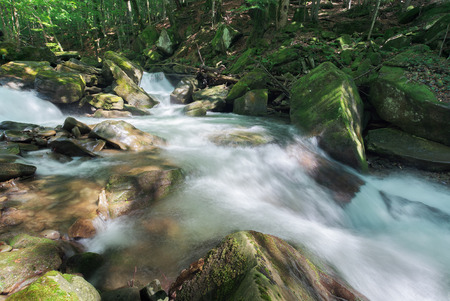 forest stream with rocky shore in summer. beautiful nature scenery. moss on the boulders. long exposure in day time Stock Photo