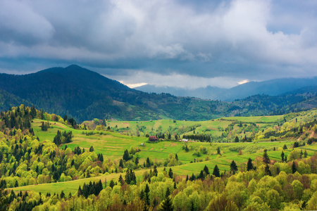 mountainous countryside in springtime. rural fields on grassy hills.  overcast weather Stock Photo - 120327176