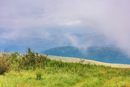 alpine meadow on a cloudy day. mysterious summer mountain landscape. stormy weather Stock Photo