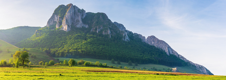 beautiful panorama of romania countryside. wonderful sunny morning in mountains. grassy meadow on the hillside and Piatra Secuiului Stock Photo