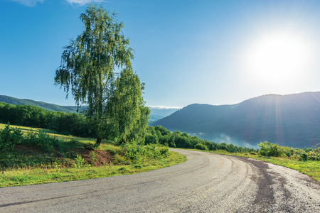 road though countryside in mountains. trees along the way. wonderful sunny morning