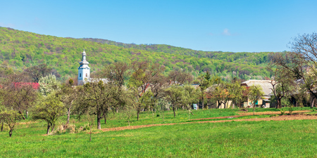 mountainous countryside in springtime. wonderful sunny weather. orchard on the outskirt of the village Stock Photo