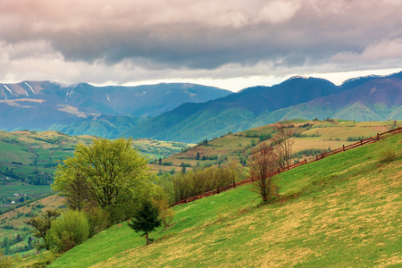 rural countryside in mountains. village in the distant mountain. agricultural fields on hills. trees on grassy slope. wonderful springtime landscape on cloudy forenoon weather Stock Photo