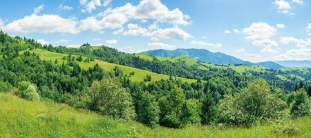 panorama of mountainous countryside in summer.  rural fields on grassy hills. ridge in the distance. wonderful sunny weather