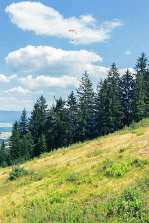 wonderful mountain landscape in summertime. alpine grassy meadow among spruce forest at the edge of a hill. paraglider in the clouds. beautiful nature scenery at high noon Stock Photo - 127959375