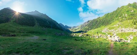 gorgeous valley of fagaras mountains in summertime. amazing landscape of romania at sunrise. location between transfagarasan road and balea creek. high peaks in the distance Stock Photo