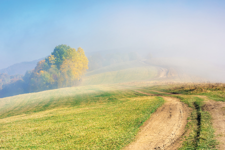 early autumn countryside scenery in foggy weather. trees in colorful foliage. country road through the hill. wonderful bright morning background in mountains.