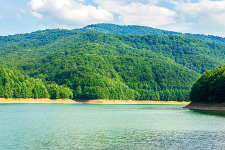 water storage reservoir in mountains. beautiful nature scenery in summer. forest on the shore around. wonderful sunny day. location Tereblya Rika HPP