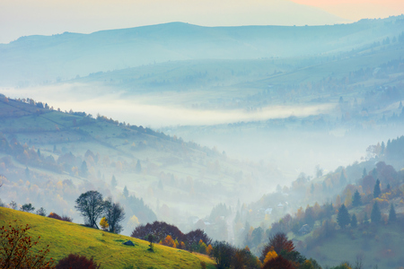 rural scenery on a foggy sunrise in mountains. trees on a grassy slope. village down in the valley. beautiful european countryside in autumn. mysterious weather Stock Photo