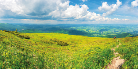 panoramic mountain landscape in summer.  green grassy hills and slopes. path downhill through the meadow. sunny weather with fluffy clouds on the sky. rain in the distant valley