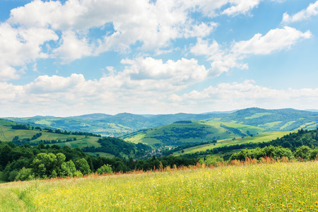 beautiful summer countryside in mountains. wonderful sunny day scenery. grassy rural fields and meadows with wild herbs. hills and mountains in the distance. blue sky with fluffy clouds