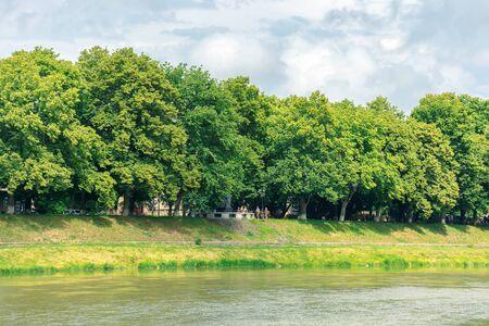 linden alley on the embankment of the river uzh. beautiful summer scenery. popular travel destination of ukraine.