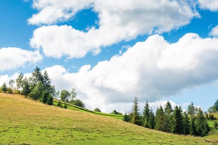 countryside landscape with forest on rolling hills.  beautiful scenery of in early autumn. bright weather with clouds on the sky