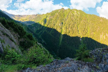 valley of the balea stream in fagaras mountains. view from the rocky cliff on a steep slope. forested hillside in the distance. popular travel destination of romania. sunny summer morning 版權商用圖片