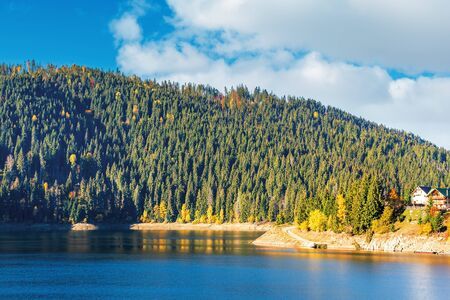 belis fantanele reserve in mountains of romania. beautiful body of water scenery in autumn. spruce forest on the shore in the morning