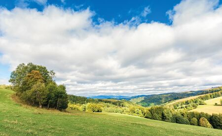 cloudy september countryside in mountains.  deciduous trees on the grassy meadow. clouds cover the blue sky. windy weather Stock Photo