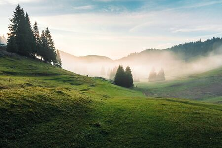 foggy dawn in romania countryside. spruce trees on hills of the Balileasa valley. shepherd shed and fence of sheepfold seen in the distance. beautiful mountain landscape in autumn Stock Photo