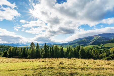 countryside landscape in mountains. spruce forest behind the meadow in weathered grass. rural area in the distant valley, gorgeous sunny weather with amazing cloudscape on a windy day of september. Stock Photo
