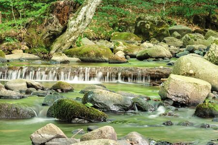 refreshing stream in the forest. beautiful nature scenery in summertime. mossy rocks among the brook. trunk in the water form a small cascade Stock Photo