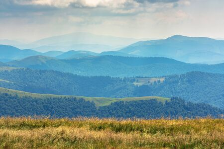 grassy meadow and rolling hills of carpathians. beautiful summer scenery. cloudy weather. location - borzhava ridge, transcarpathia, ukraine