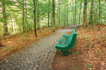 panchina vicino al sentiero di pietra nella foresta. bellissimo scenario naturale. fogliame verde sugli alberi in estate. riposati all'ombra Archivio Fotografico