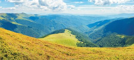 panoramic sunny summer landscape in mountains. amazing view from the hill of borzhava range. clouds on a blue sky.