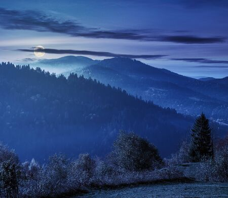 beautiful countryside in mountains at night in full moon light. trees on the edge of a grassy meadow. hills rolling in to the distance. hazy weather.