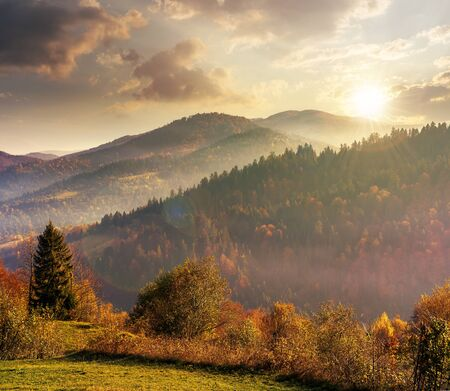 beautiful countryside in mountains at sunset in evening light. trees on the edge of a grassy meadow. hills rolling in to the distance. hazy weather.