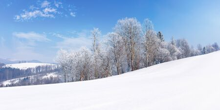 panorama of a beautiful winter landscape. forest on the edge of a snow covered meadow. trees in hoarfrost on the slope. wonderful frosty sunny weather with clouds