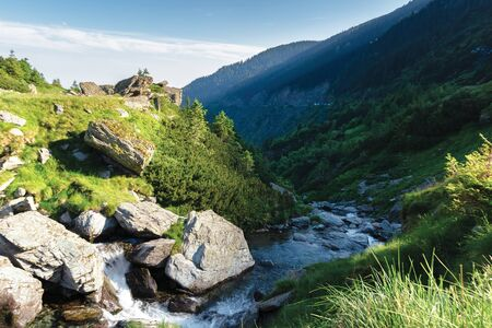 balea water stream in the mountains at sunrise. beautiful summer nature scenery of fagaras, romania. huge rocks and spruce trees on the grassy slopes. sunny weather with cloud on the blue sky
