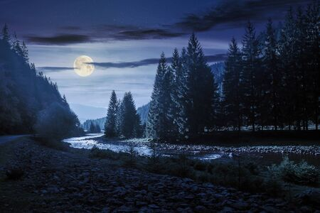 mountain river winding through forest at night in full moon light. beautiful nature scenery in autumn. spruce trees by the shore. wonderful synevyr national park landscape in good weather with clouds