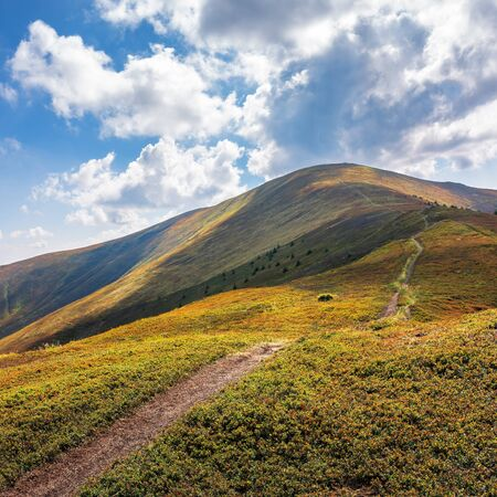 trail uphill through the mountain ridge to the top. sunny august weather with clouds on the blue sky. wide grassy meadows on hills in dappled light. success motivation concept