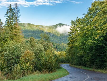 old country road through forest in to mountains. beautiful transportation background in early morning. low cloud on the ridge and hi clouds on the blue sky. wonderful sunny morning