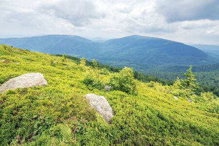 rocks on the grassy slope of mountain runa. cloudy overcast sky. calm summer landscape. ridge in the distance Stock Photo