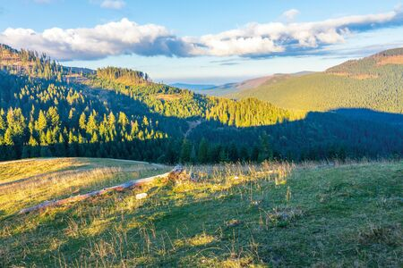 beautiful sunset landscape in apuseni mountains. coniferous forest on the distant hills and grassy meadow in evening light. fluffy cloud on a pale blue sky above the ridge in autumn Stock Photo