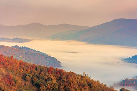 fog in the valley at sunrise. beautiful autumn scenery in mountains. forest on the hill in fall foliage. Stock Photo