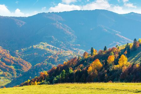 wonderful autumn afternoon in mountains. trees on the hill in colorful fall foliage. sunny weather with clouds on the sky. traditional carpathian countryside landscape with rolling hills Stock Photo - 127958463