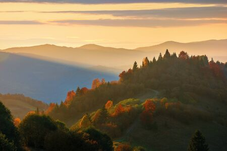 beautiful autumn sunset in mountains. trees on the hill in fall foliage. distant ridge in sunlight. beautiful countryside scenery on a warm october evening Stock Photo