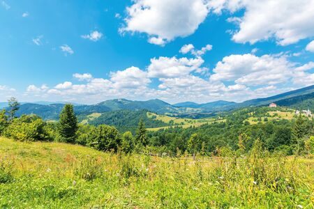 wonderful summer afternoon in mountains. trees on the hill in green foliage. sunny weather with fluffy clouds on the sky. traditional carpathian countryside landscape with rolling hills Stock Photo