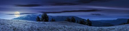 beautiful panoramic landscape in august. row of beech trees on the meadow in weathered grass. mountain range in the distance in full moon light. blue night with clouds on the sky