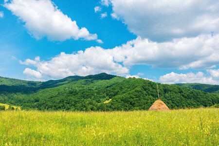 beautiful rural area in summertime. haystack on the grassy meadow in mountains. fluffy clouds on the blue sky Stock Photo