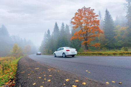 new asphalt road through forest in fog. vehicles driving by in to the distance. mysterious autumn scenery in the morning. tree in orange foliage, some leaves on the ground. gloomy overcast weather. Stock Photo