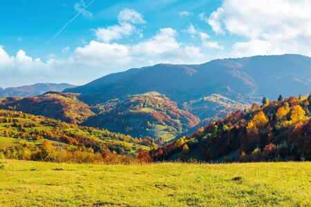 wonderful autumn afternoon in mountains. trees on the hill in colorful fall foliage. sunny weather with clouds on the sky. traditional carpathian countryside landscape with rolling hills