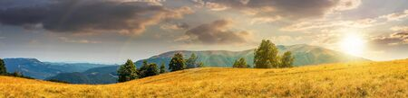 beautiful panoramic landscape in august. row of beech trees on the meadow in weathered grass. mountain range in the distance in evening light. sunset with clouds on the sky Stock Photo