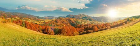 beautiful panoramic landscape in october at sunset. meadow in weathered grass trees in fall foliage. mountain range in the distance beneath a sky with fluffy clouds in evening light Stock Photo