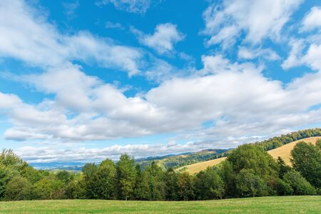 beautiful countryside in early autumn. trees along the grassy meadow on the hill. sunny weather with cloudy sky. mountain ridge in the distance. wonderful scenery of carpathians Stock Photo
