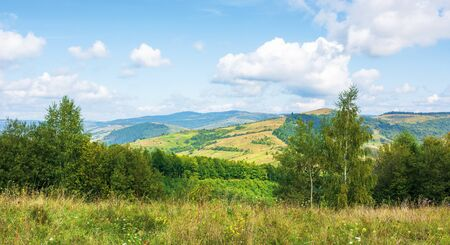 beautiful countryside in mountain. sunny weather. clouds on the blue sky Stock Photo - 128800876
