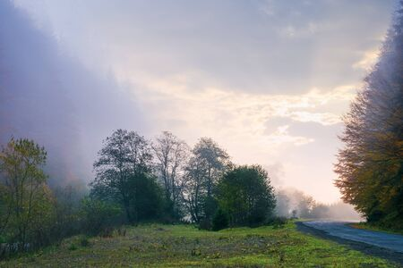thick fog in autumn countryside. trees on hills in rural area. sunlight breaking through. mysterious weather phenomenon at sunrise