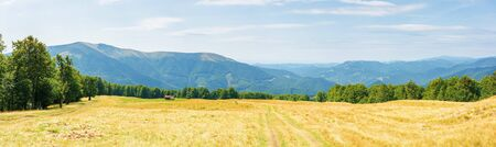 beautiful panorama of a summer mountain landscape. grassy meadow on the hillside. trees on the edge of a hill. mountain ridge in the distance. clouds on the sky Stock Photo