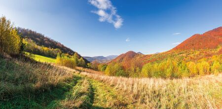 beautiful mountain landscape in autumn. forest on the grassy hills. wonderful sunny weather at high noon. amazing carpathian panoram of uzhanian national park, ukraine Stock Photo